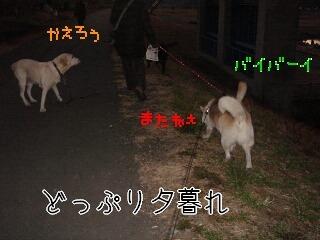 20117_013