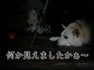 20124_006