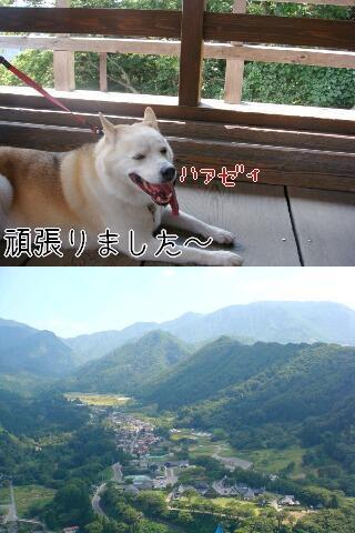 Omatomego20912