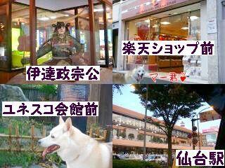 Omatomego209122