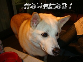 201013_067