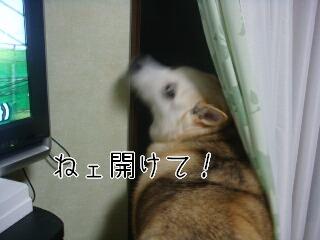 201029_002