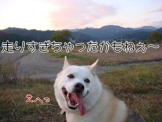 201114_010