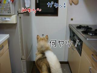 201120_004