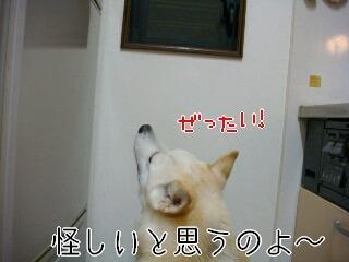 201120_009