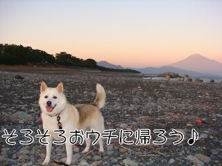201123_62