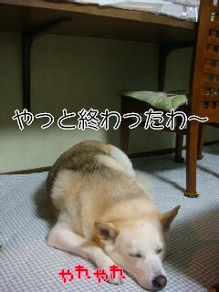 201230_028