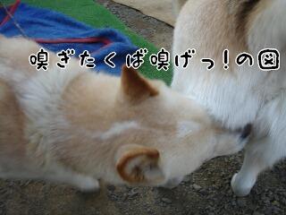 Yun_4