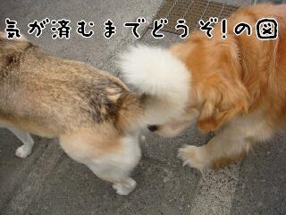 Yun_5