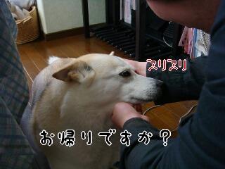2157_014