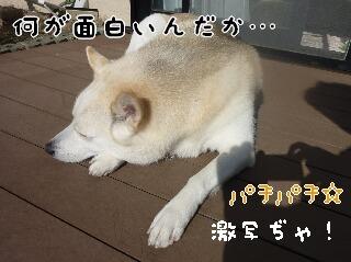 21122_007