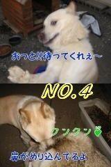 Omatomego6232
