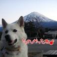 富士山 ④