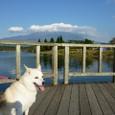 富士山と田貫湖