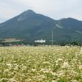 磐梯山と蕎麦の花