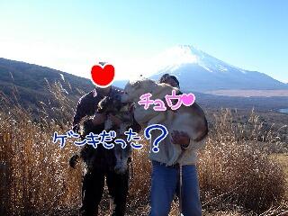 富士山 ③