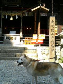 山形県山寺に居ます!