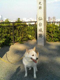 仙台に到着しました〜